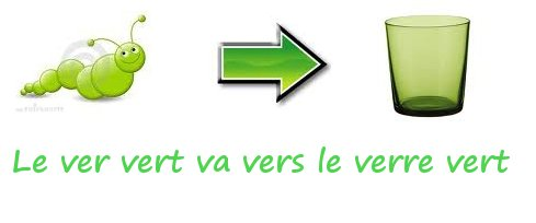 french homonyms